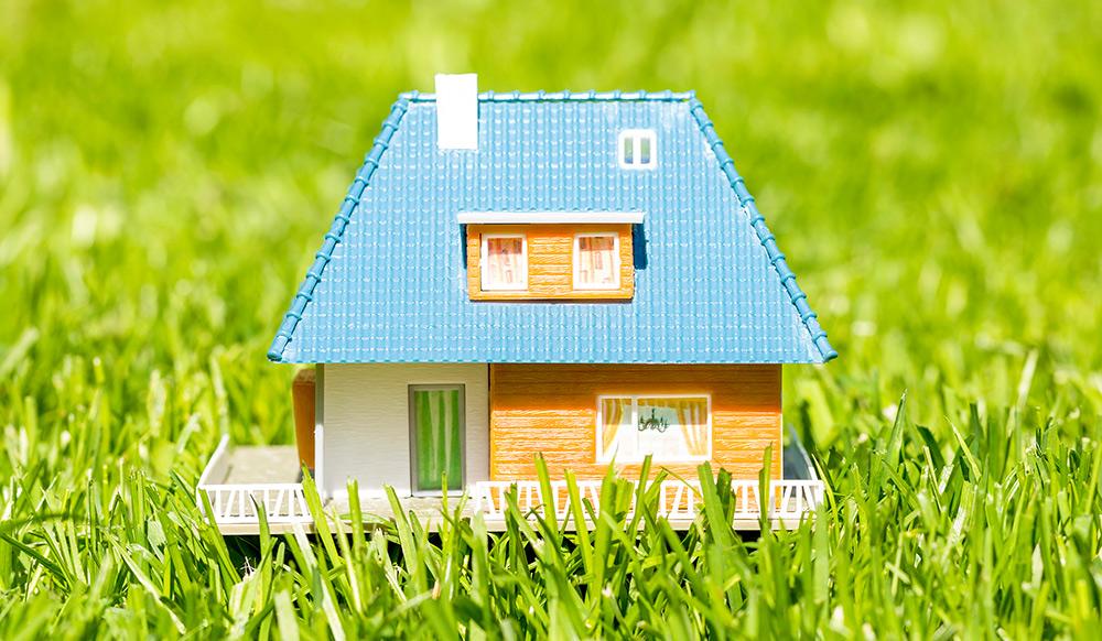Home ⭐ Dreamwoodhouse