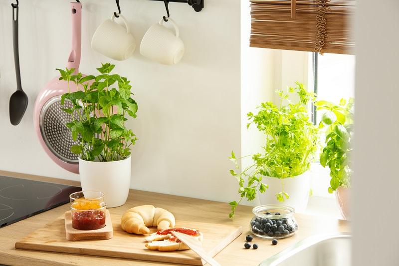 Kuchnia w całorocznym domku mobilnym - rodzaje. ⭐ Dreamwoodhouse