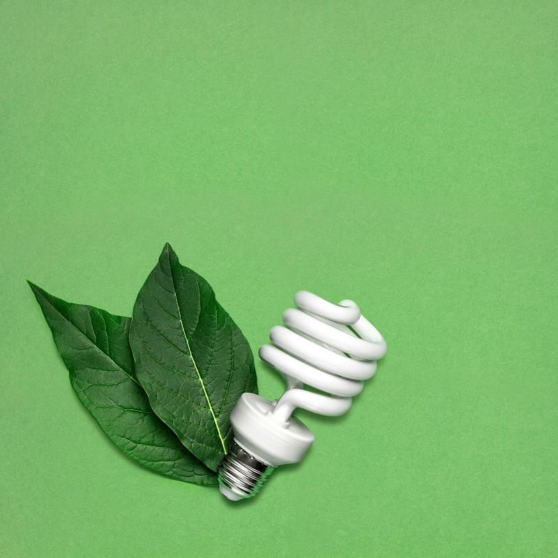 Oświetlenie LED domku letniskowego - zalety ⭐ Dreamwoodhouse
