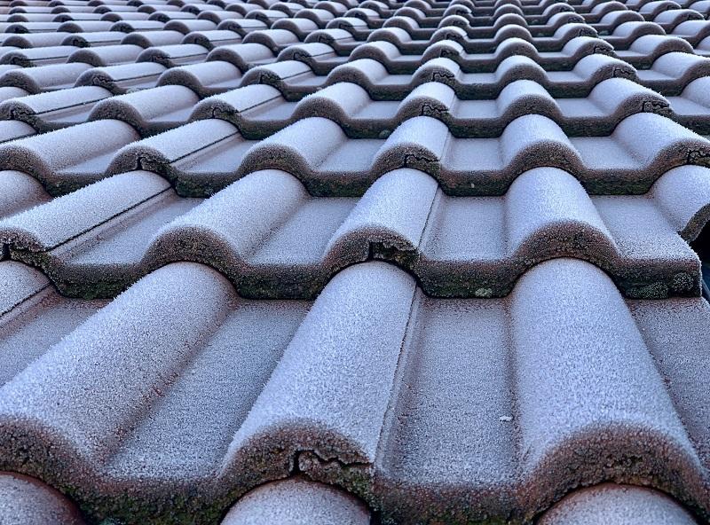 Czy domek może mieć dach jednospadowy? ⭐ Dreamwoodhouse
