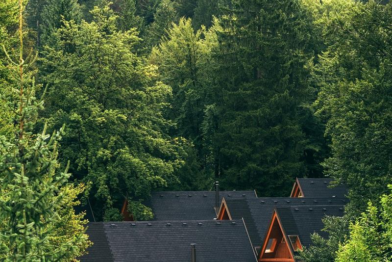 Kształt dachu w domku mobilnym - jaki wybrać ⭐ Dreamwoodhouse