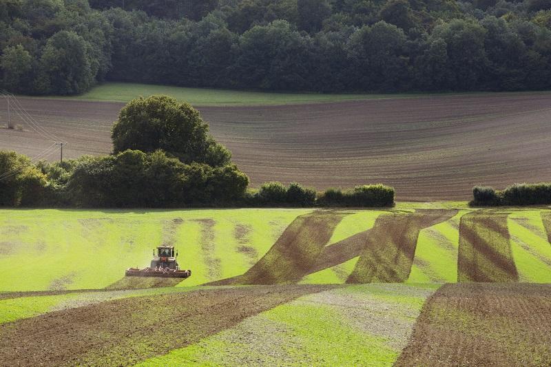 Działka rolna - zalety, formalności